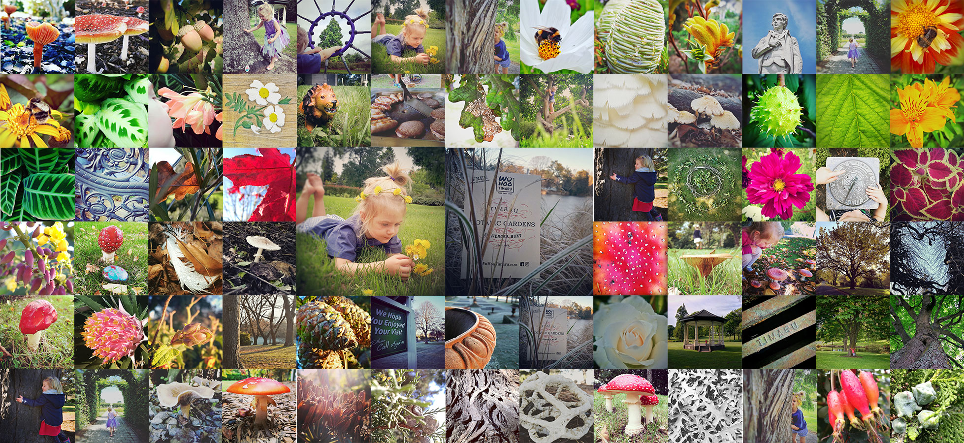 WhuHoo Timaru Collage BotanicGardens Cover Web